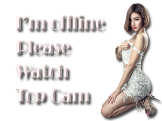 webcam model offline